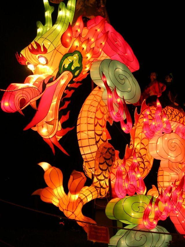 Dragon by Erin Keller