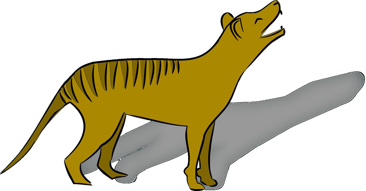 thylacine-160488_1280