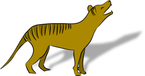 thylacine-160488_1280