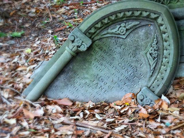 graveyard_by_Anne_Austin_CC