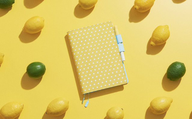 Hobonichi Techno Cousin Vitamin Dot Cover 2018