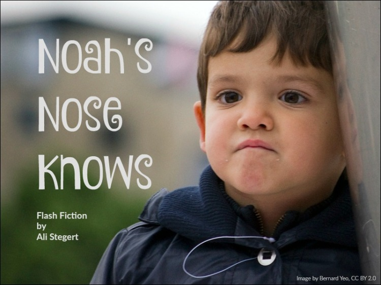 Noah's Nose Knows