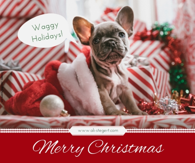 Ali-Stegert_dot_com_Holiday_Wishes